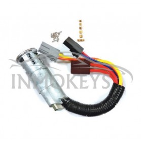 CT-IG33K, KIT PARA CODIFICAR SAXO, SX9